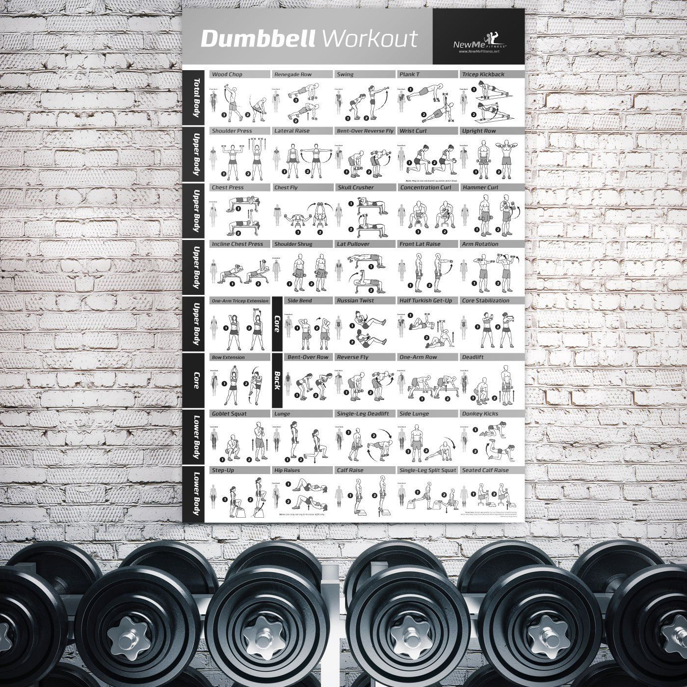Dumbbell Exercise Poster Laminated Workout Strength Training Chart