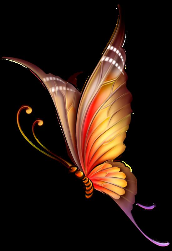 Butterflies°•.‿ ⁀ | Насекомые | Pinterest | Butterfly ...