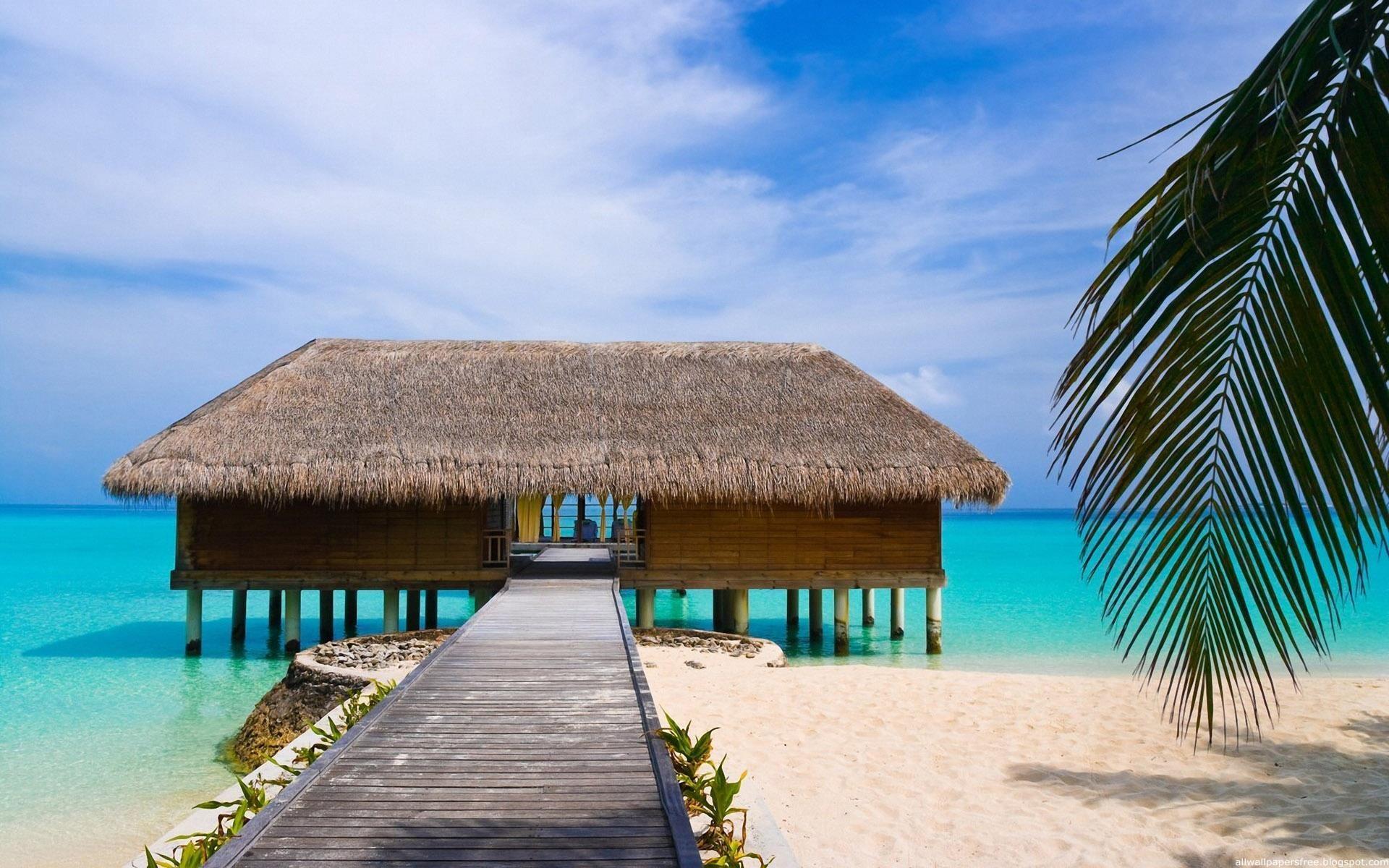 vacances de rêve  | voyager | pinterest | maisons de plage, ile