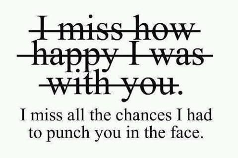 I miss all the chances I had to punch you in the face