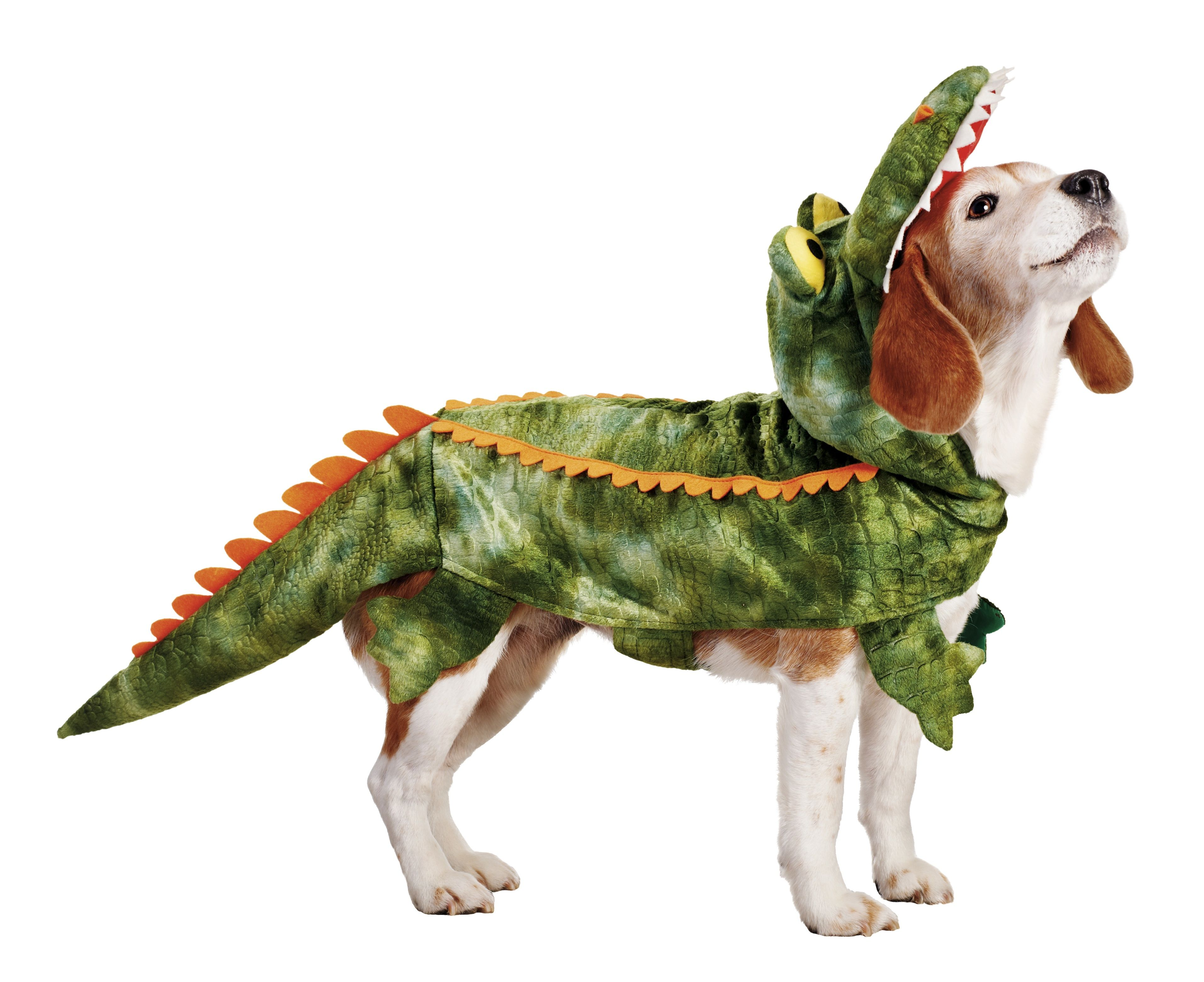 Gator dog, one of Petco's top 10 Halloween costumes for ...