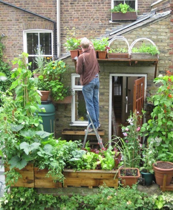 Gemuse Auf Dem Balkon Einen Hochbeet Garten Anlegen Garten