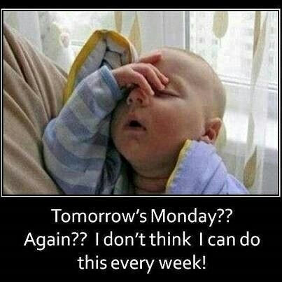 A Little Sunday Night Humor Goodnight Funny Baby Memes Funny Pictures Tomorrow Is Monday