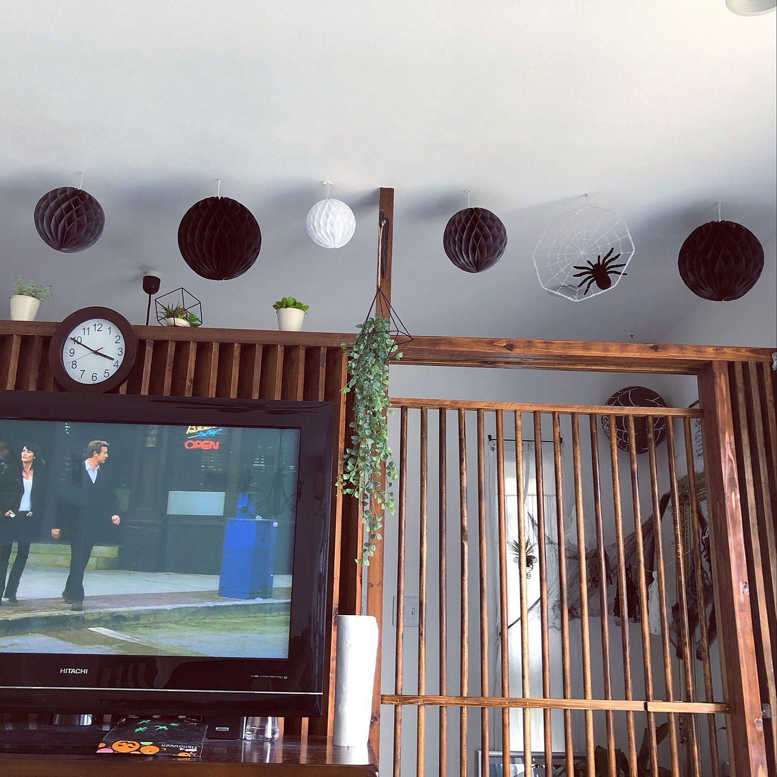 壁 天井 蜘蛛 格子引き戸 D I Y 蜘蛛の巣 などのインテリア実例