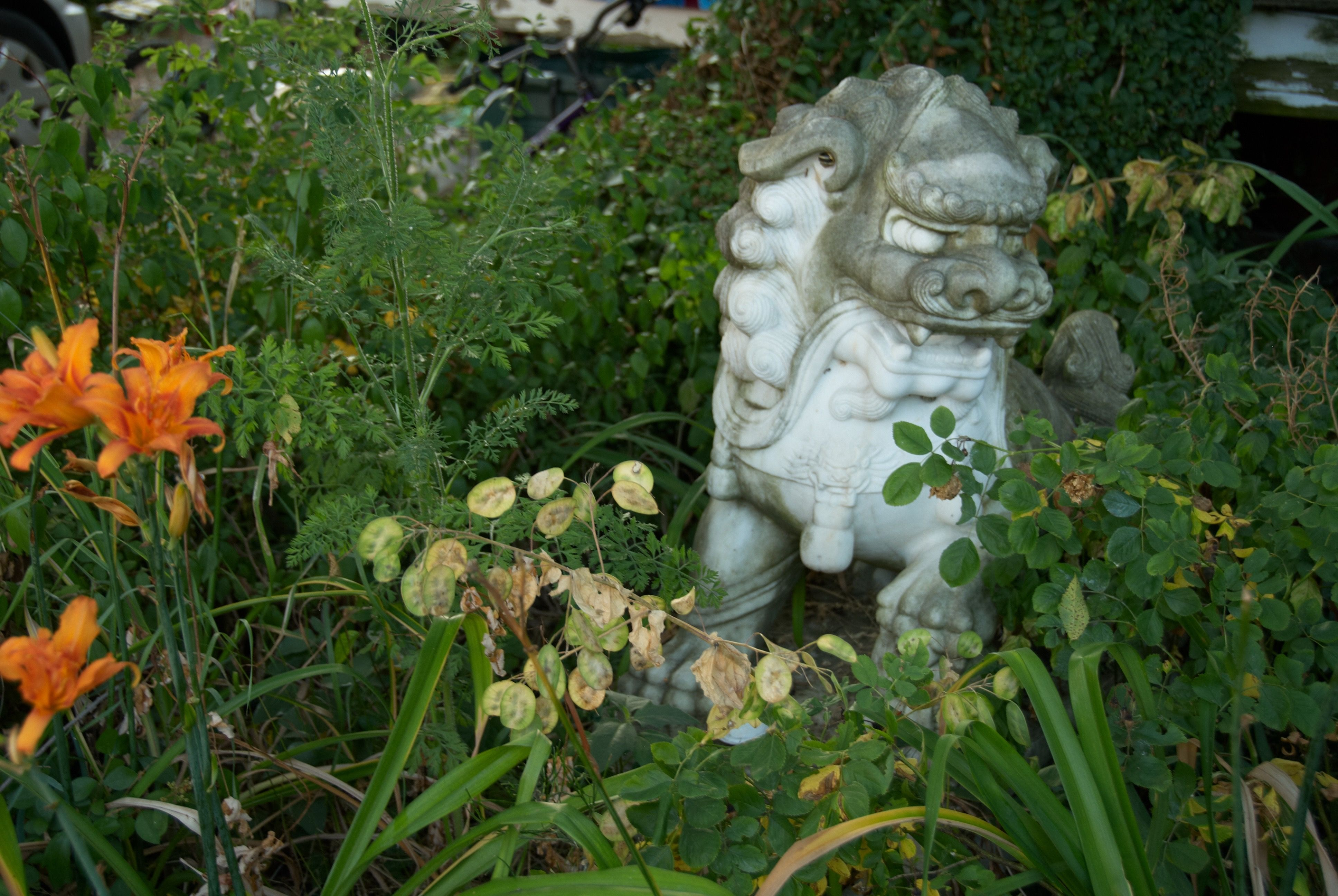 Dragon garden ornament frolicking amongst the flowers