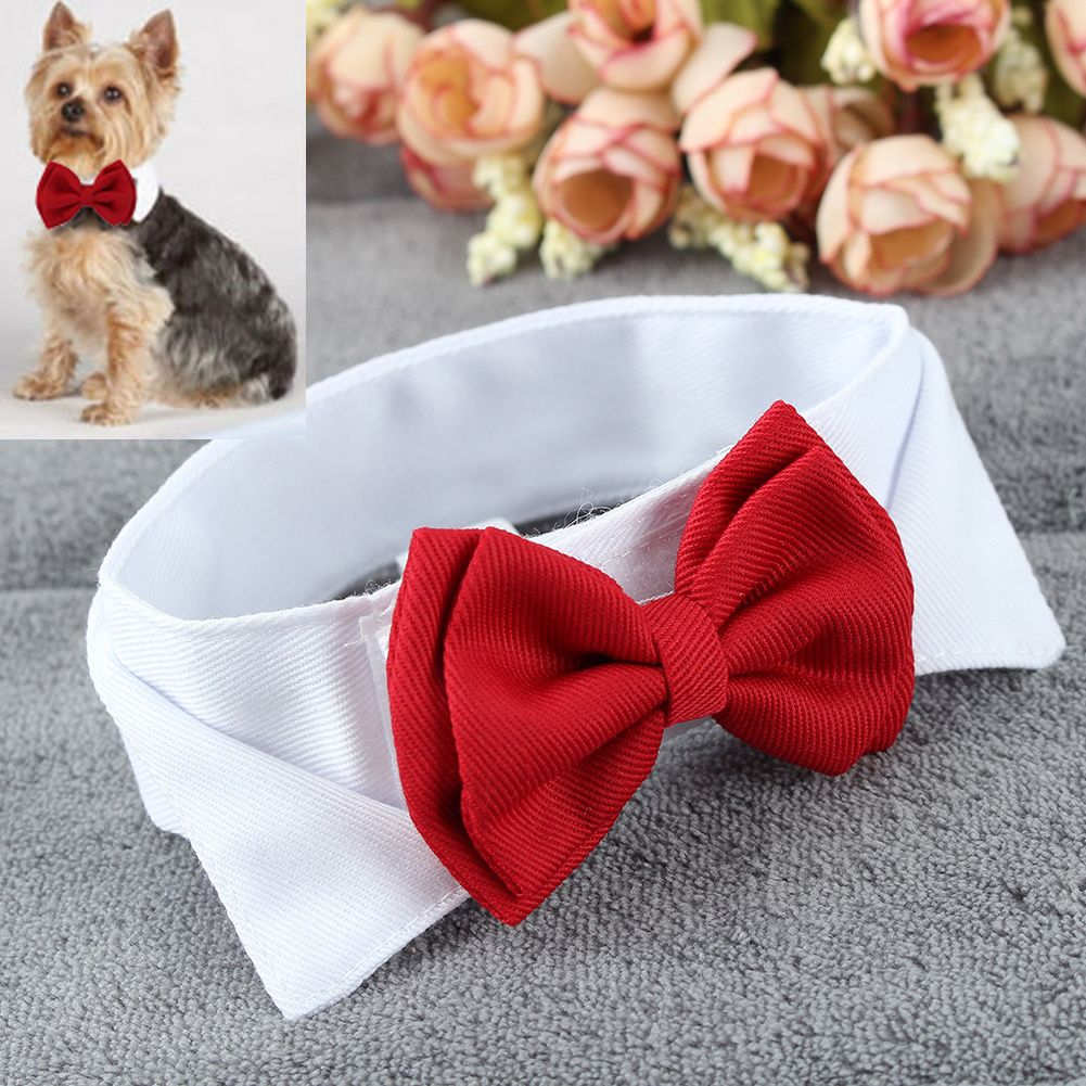 Pet puppy kitten dogs cat adjustable bow tie collar necktie bowknot