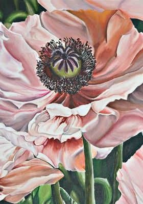 Rosa Mohnblumen In 2019 Blumen Blumen Malen Und Blumen Zeichnen