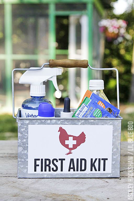 Chicken First Aid Kit (and Free Download)