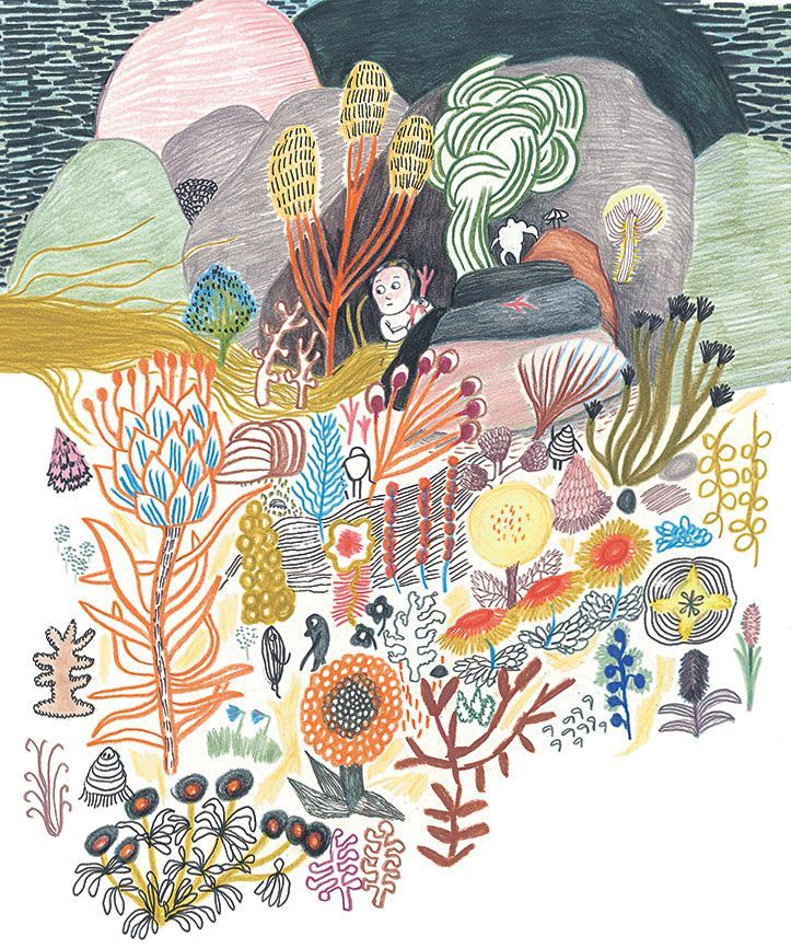 Illustration from mre mduse mother medusa by kitty crowther drawings solutioingenieria