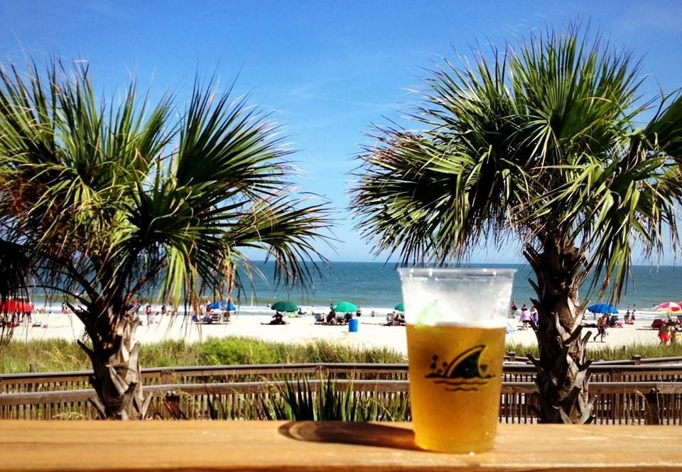 Landshark Bar And Grill Myrtle Beach Sc