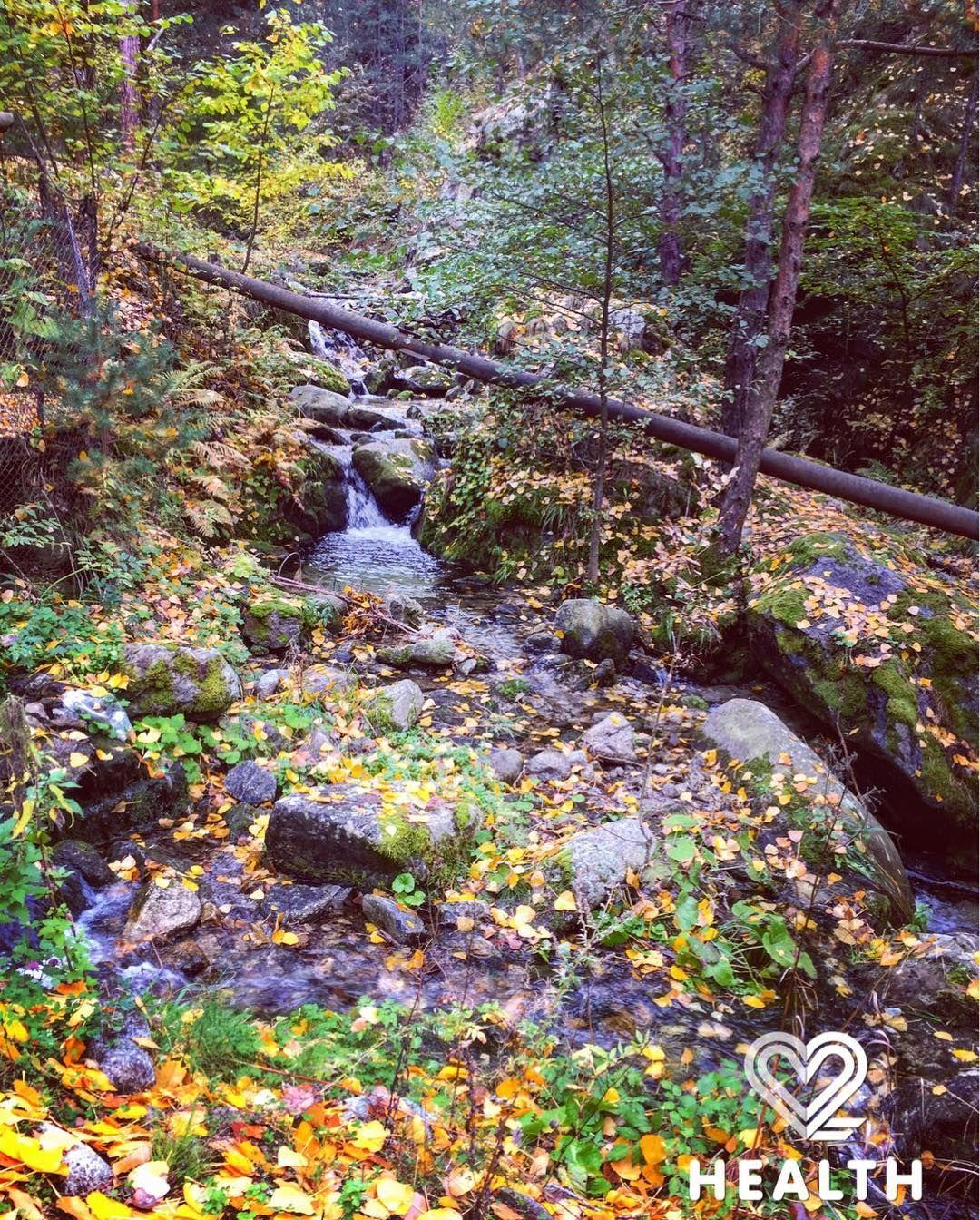 I  autumn!  #hiking #hike #weekendvibes #weekend #mountain #nature #naturelovers #naturephotography #mothernature #autumn #autumnleaves #travel #travelgram #travelphotography #traveltheworld #bulgaria #countryside #beautifuldestinations