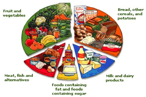 five groups of food for a diet