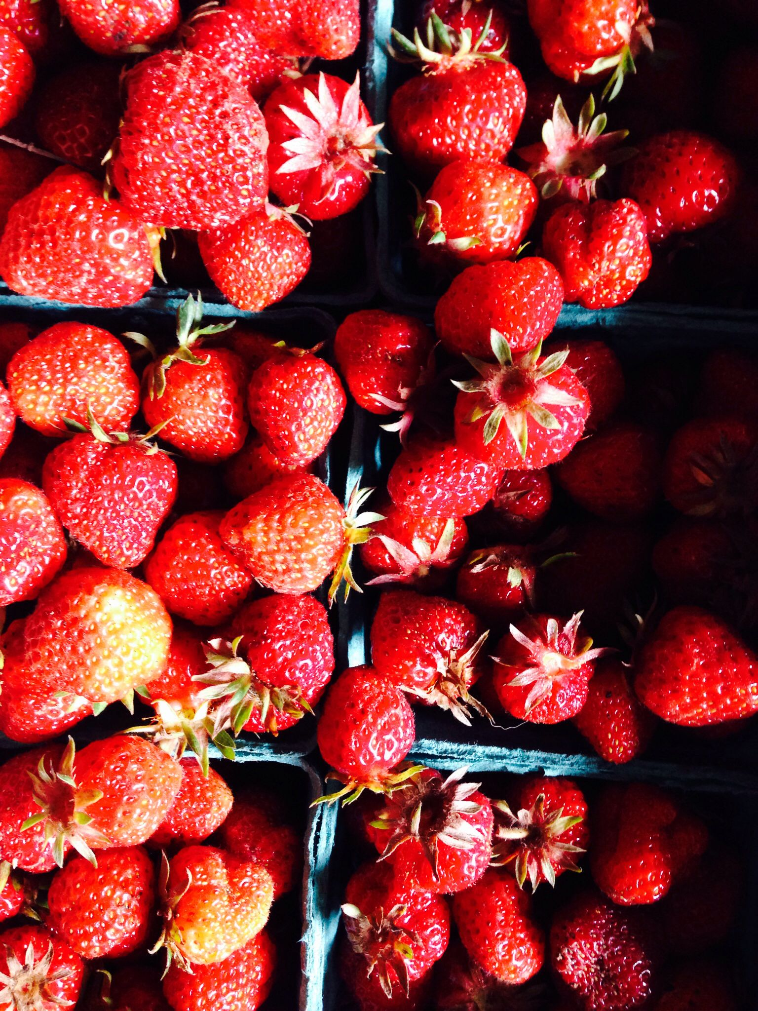 Boisfort Valley Farm organic local strawberries first of