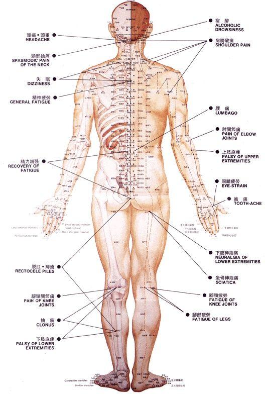 body by simone free pdf