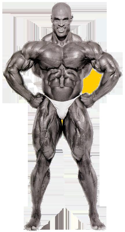 Ronniecoleman Png 431 800 Ronnie Coleman Workout Ronnie Coleman Black Bodybuilder