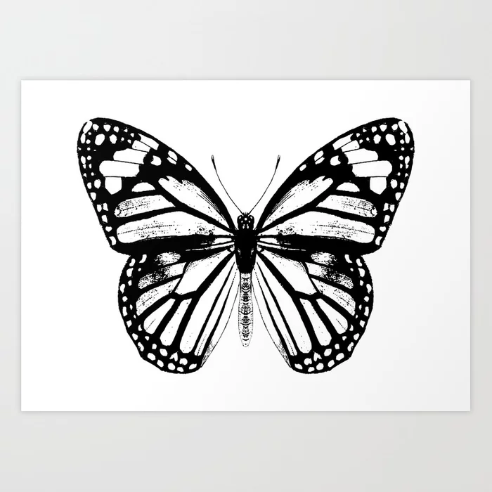 Photo of 10 Monarch Butterfly | Vintage Butterfly | Black and White | Art Print by eclect…