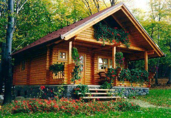 vive la maison en bois la solution idéale pour les adeptes de la