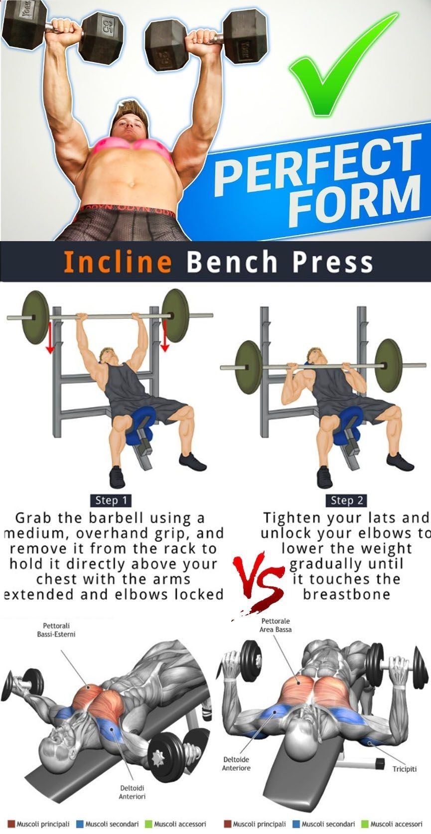 Flat Dumbbell Press Vs Incline Bench Press Bench Press
