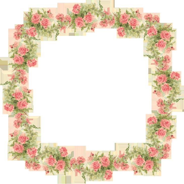 Catherine Klein Peach Roses Digital Elements Peach Roses Digital Elements