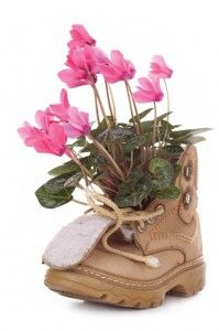 Shoe as vase