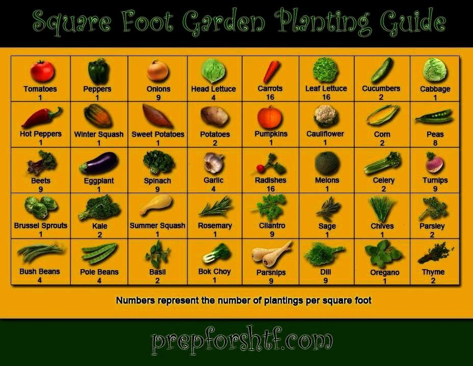 require as much or as little space as others Plant the correct number of seeds in each square to maximize your garden while not harming the growth of each plantNot all pl...