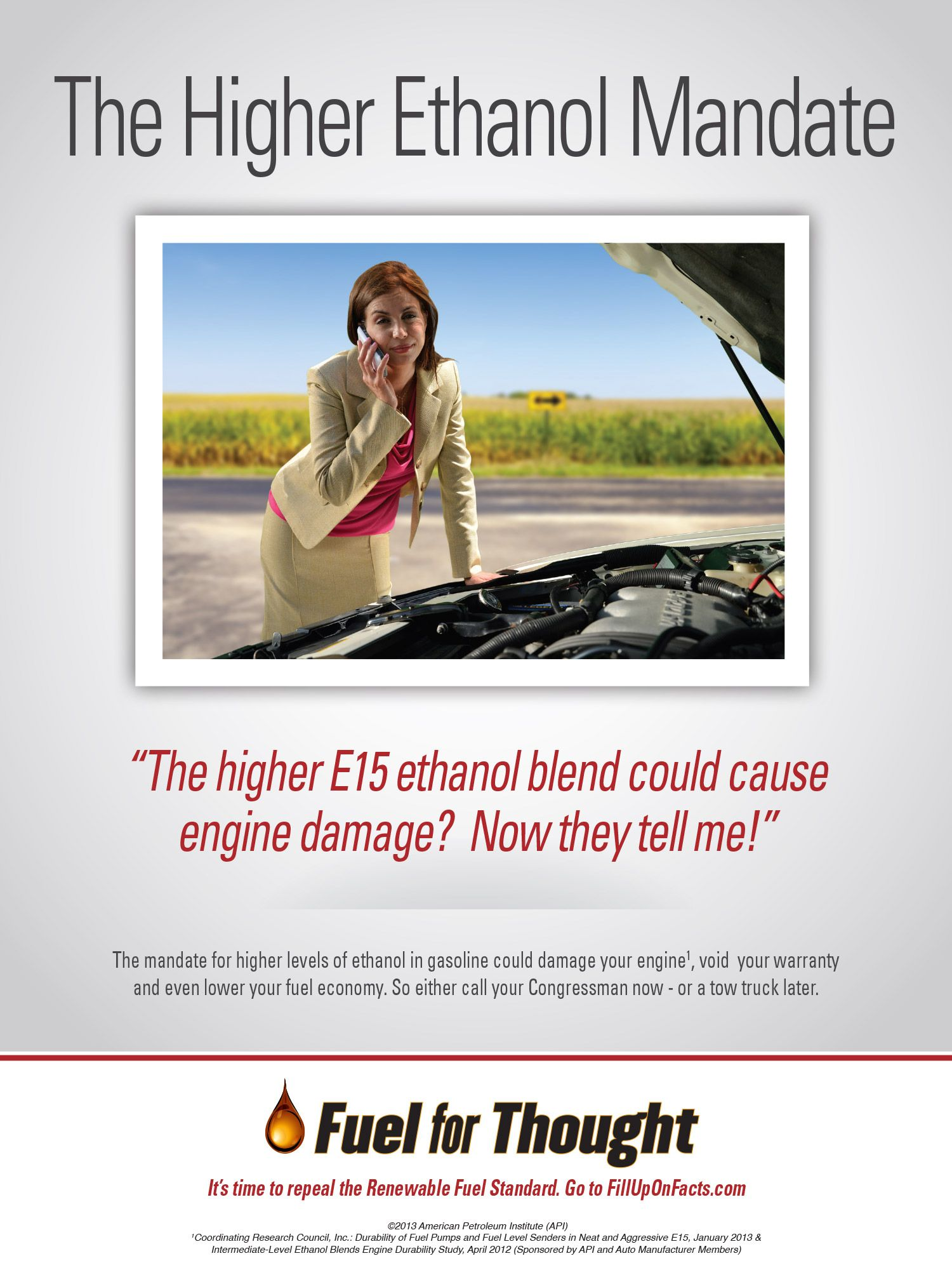 The mandate for higher levels of ethanol in gasoline could