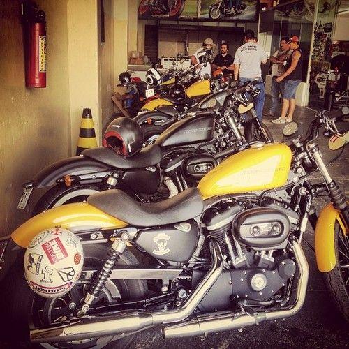 Hj o clima num tá duas rodas não.. #familiamaskerana #harleydavidson #iron883 #sportster (em R2 Moto Center)