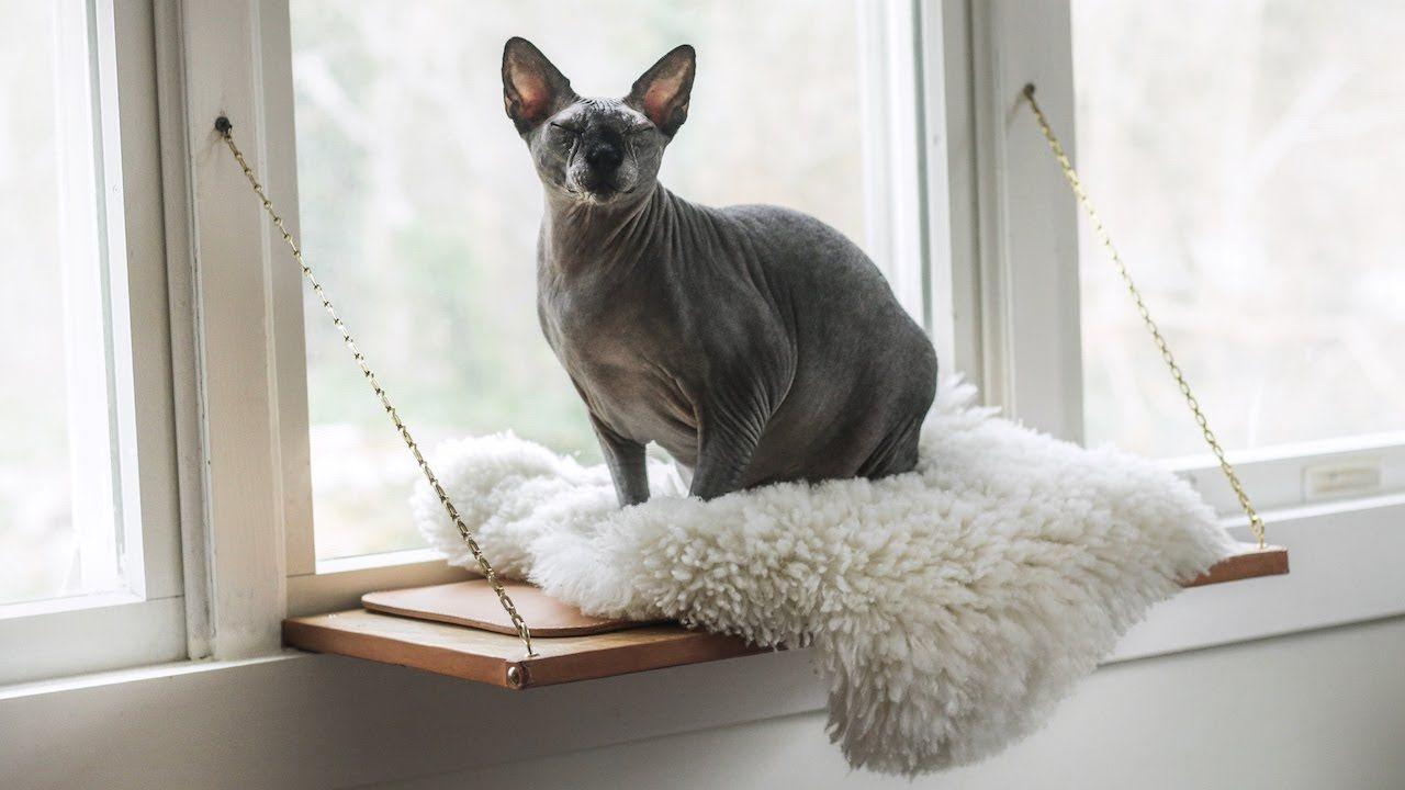 Building martha stewarts cat window perch youtube in