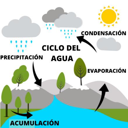 Ciclo Del Agua O Hidrológico Etapas E Importancia Ciclo Del Agua Enseñanza De La Geografía Ciclo Hidrologico