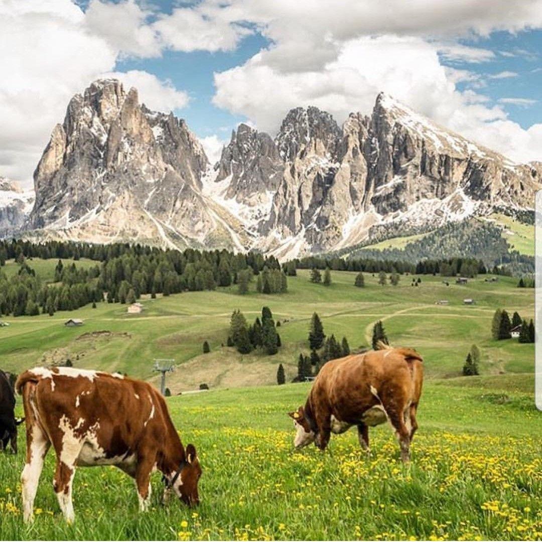 Seiser alm / Alpe di Siusi   Abenteuer und reisen, Dolomiten, Tirol