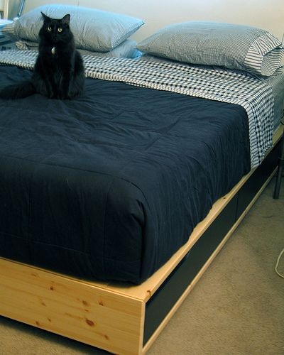 Ikea Mandal Bed Black Platform With Storage Beds Built In
