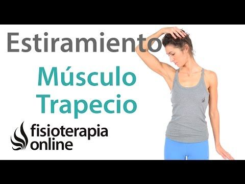 ejercicios para fortalecer el cuello fisioterapia