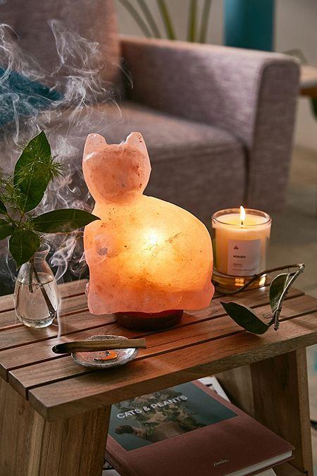 Salt Lamps And Cats Fascinating Cat Himalayan Salt Lamp  Yoga Room  Pinterest  Himalayan Salt Inspiration Design