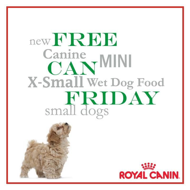 royal canin wet dog food small breed
