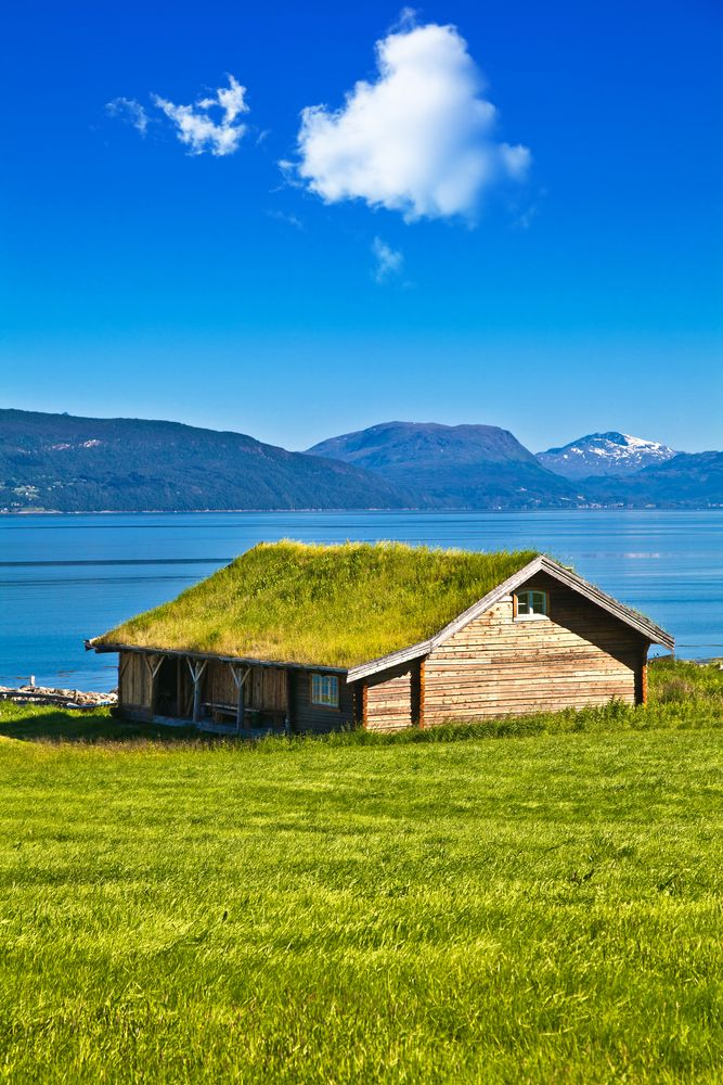 How To Install A Green Roof Green Design Living Roofs