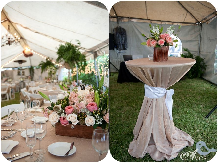 Dallas fort worth wedding photographers aves photography for Pinterest outdoor wedding ideas