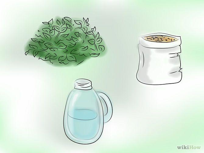 C mo hacer l quido fertilizante org nico de plantas - Como hacer plastico liquido ...