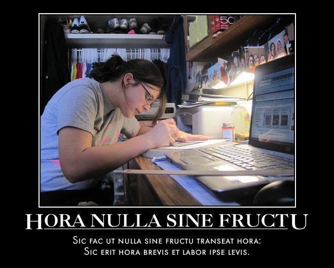 Hora Nulla Sine Fructu Sic fac ut nulla sine fructu transeat hora:    Sic erit hora brevis et labor ipse levis.