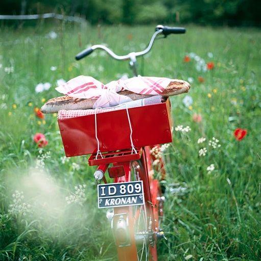 bike & field & poppies.