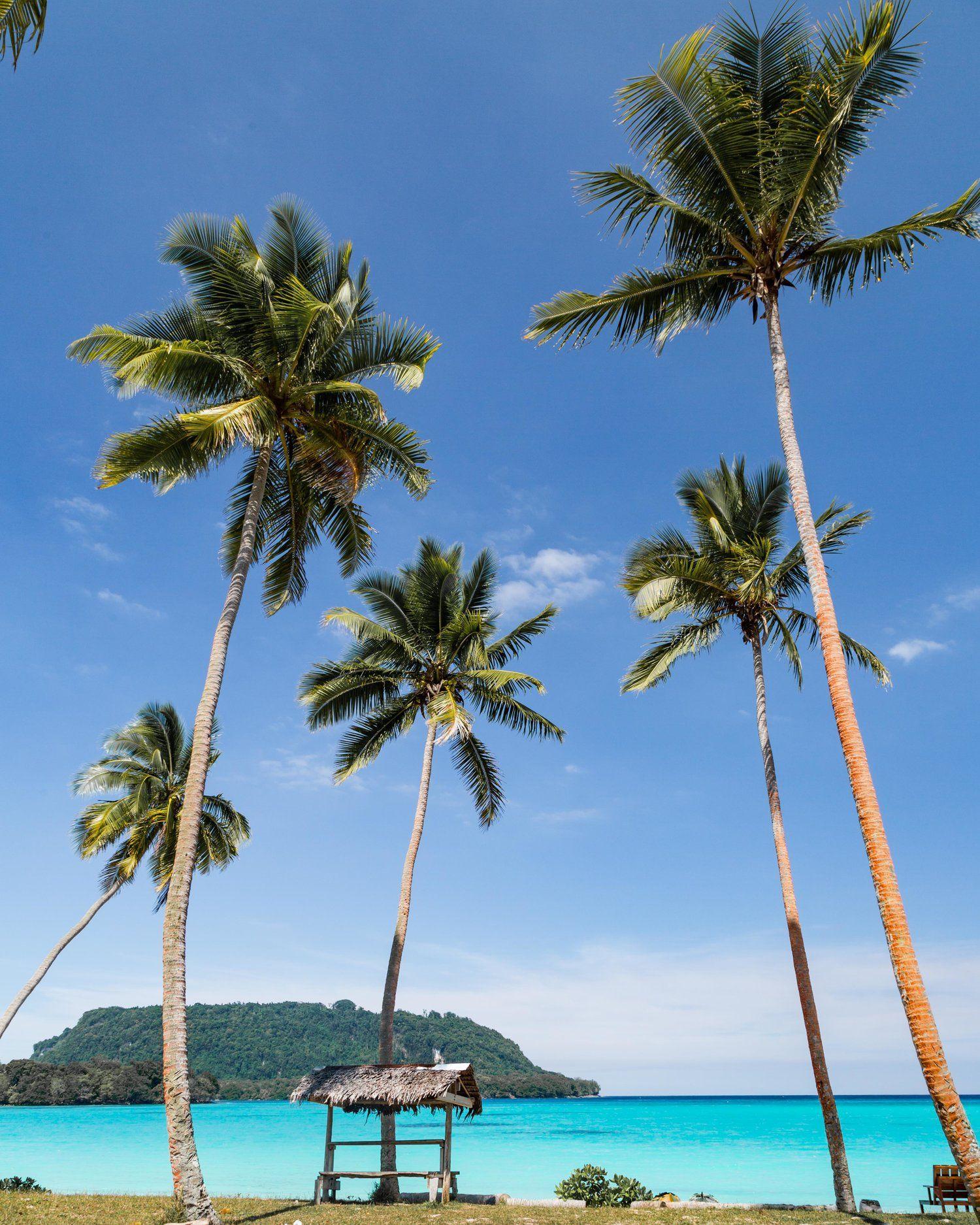 Vanuatu Beaches: 22 Photos To Inspire You To Visit Vanuatu In 2020
