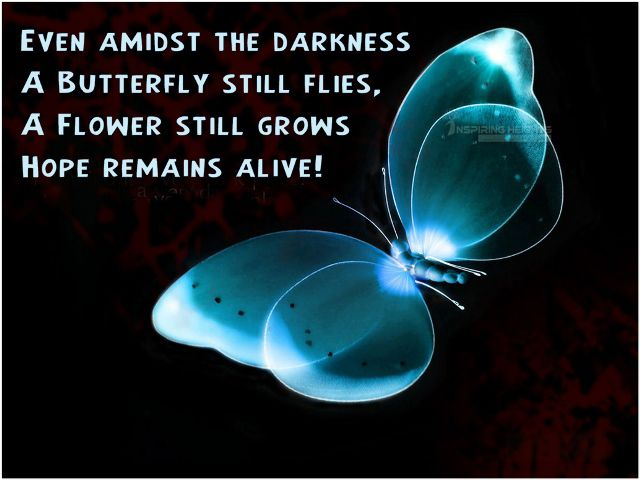 Even amidst the darkness A Butterfly still flies..