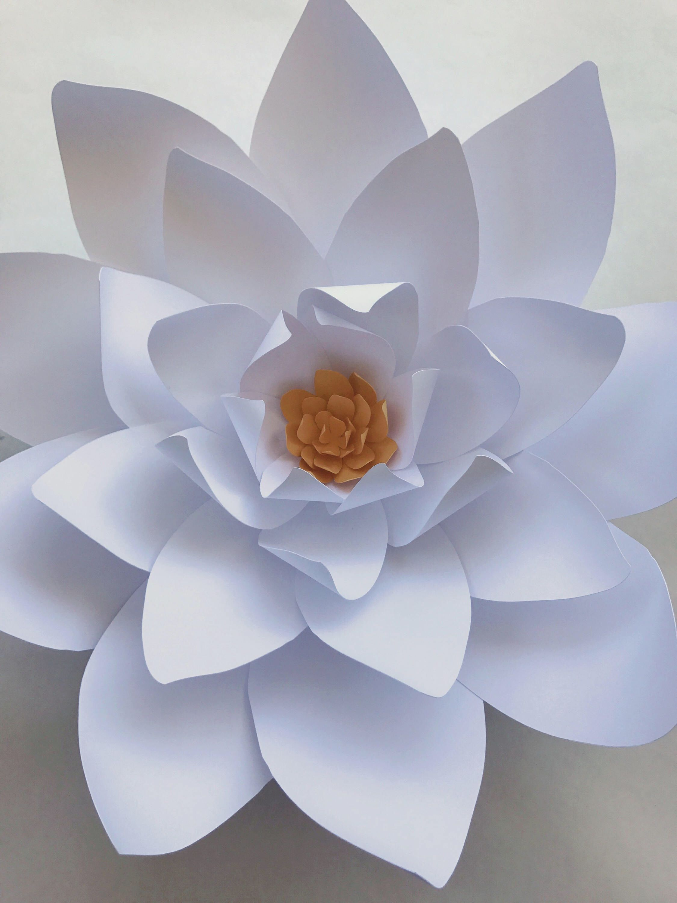 Paper Flower Templates Include Video Instructions Diy Paper Flowers