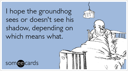 Groundhog Day Family Guy Quotes Funny Quotes Geek Humor