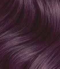 Image result for ion permanent hair color chart intense violet also best images in rh pinterest