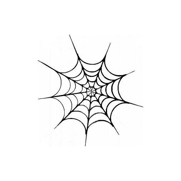 Spider Web Pictures Pics Images And Photos For Your Tattoo