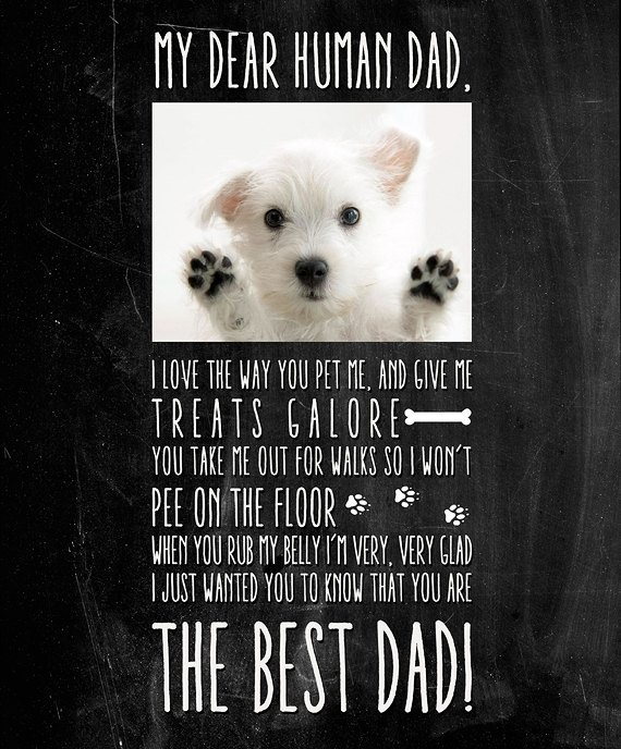 Custom Made And Personalized Gift For Pet Lover Pet Lover Wall