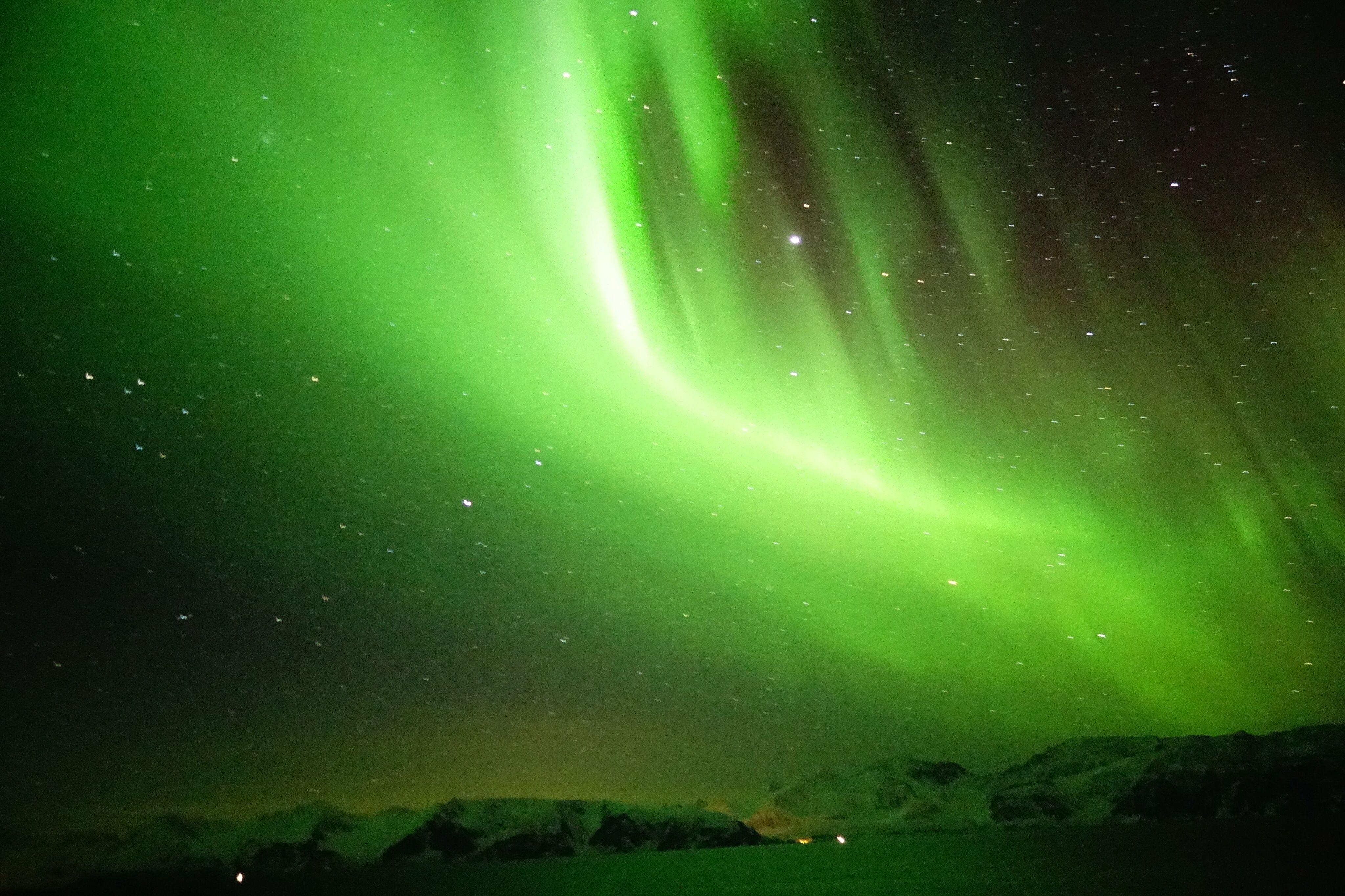 Northern Lights Norwegian Coast