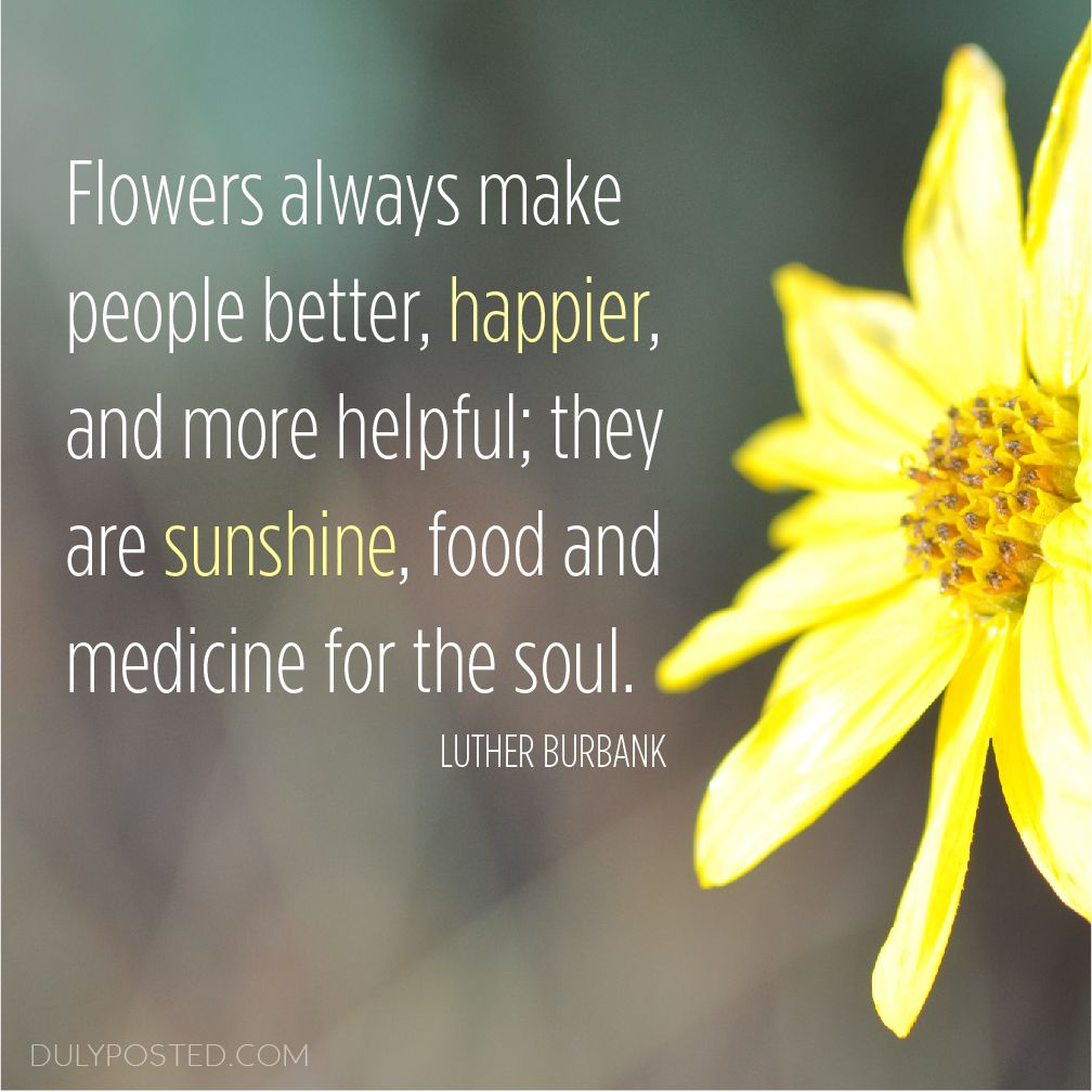 Flowers Always Make People Better Happier And More
