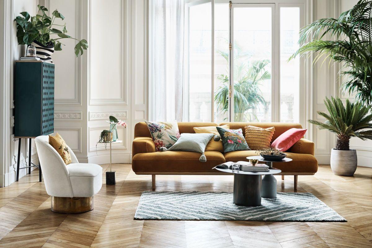Cuatro Plantas De Interior Para Tu Casa Que No Necesitan Luz Directa Y Algunas Son Casi I In 2020 Living Room Color Schemes Cheap Living Room Sets Elegant Living Room