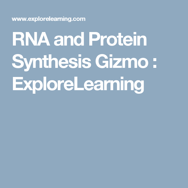 Rna and protein synthesis gizmo explorelearning biology pinterest rna and protein synthesis gizmo explorelearning fandeluxe Choice Image